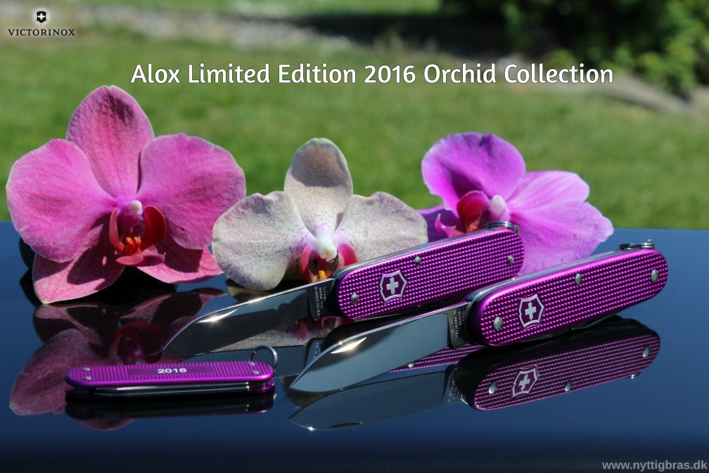 Victorinox Alox Limited Edition 2016 Orhid - Alle 3 lommeknive samlet