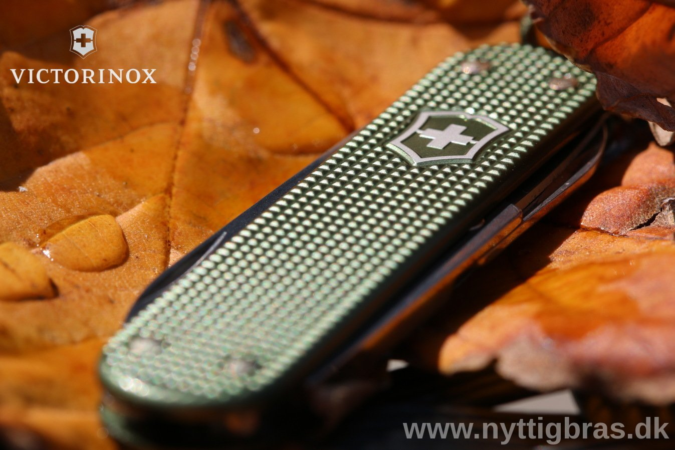Makro foto af Victorinox Alox Classic 2017 Limited Edition Olive