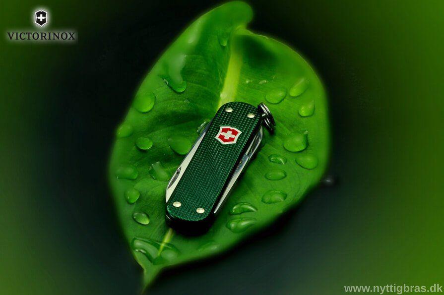 Victorinox Classic Alox Green Lommekniv på et grønt blad
